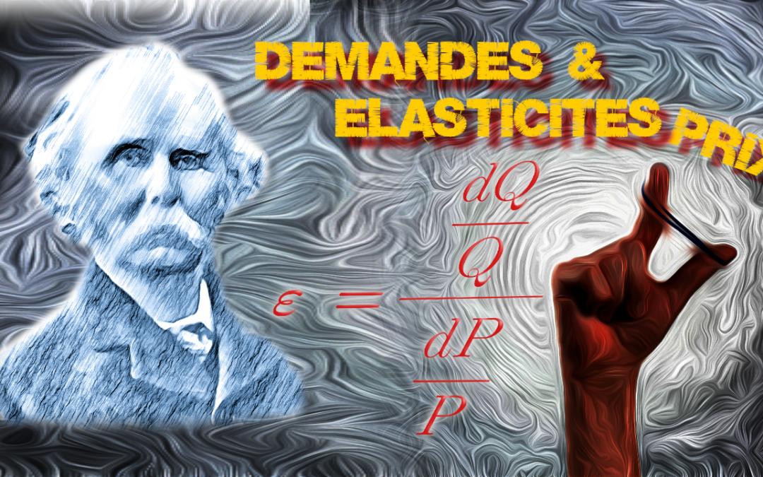 Fonctions de demande et élasticités prix (Focus)